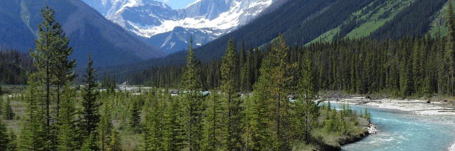 Kanada – Skalnaté hory